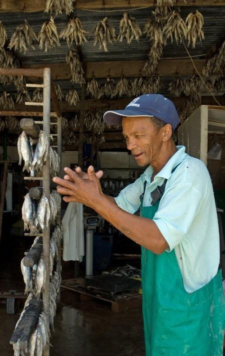 Proud bokkom fisherman in Velddrif